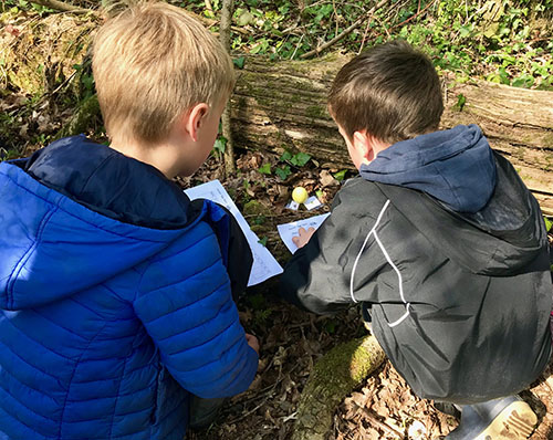 Year 2 Easter Egg Hunt at Forest School